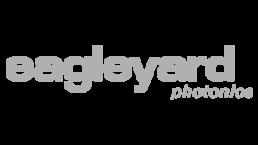Logo eagleyard_grau