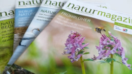 Magazin Natur+Text
