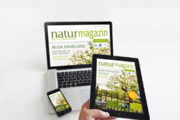 e-book für Natur+Text